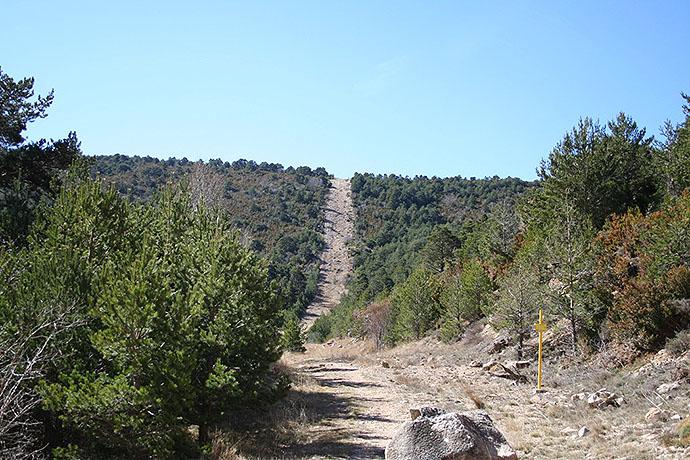 Monte que atraviesa el Gasoducto