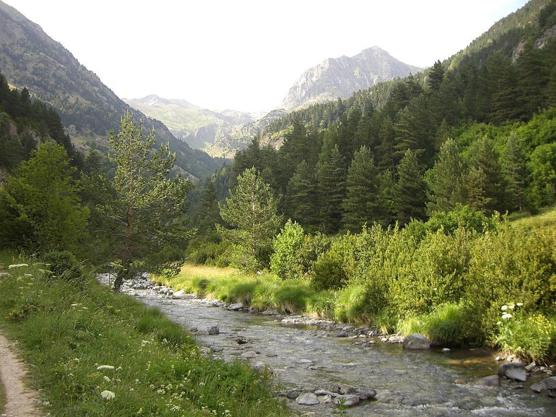 Río Aguas Límpias