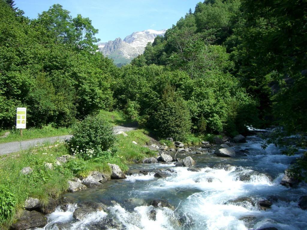 Cruce palanca río Estos