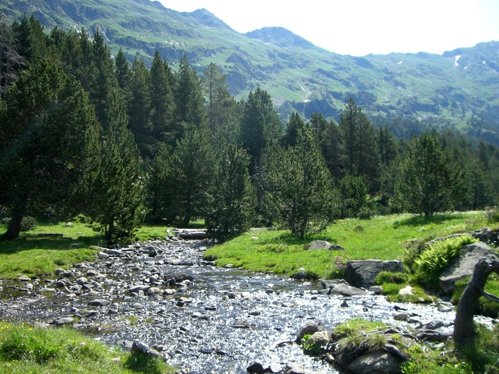 Llanos de La Besurta