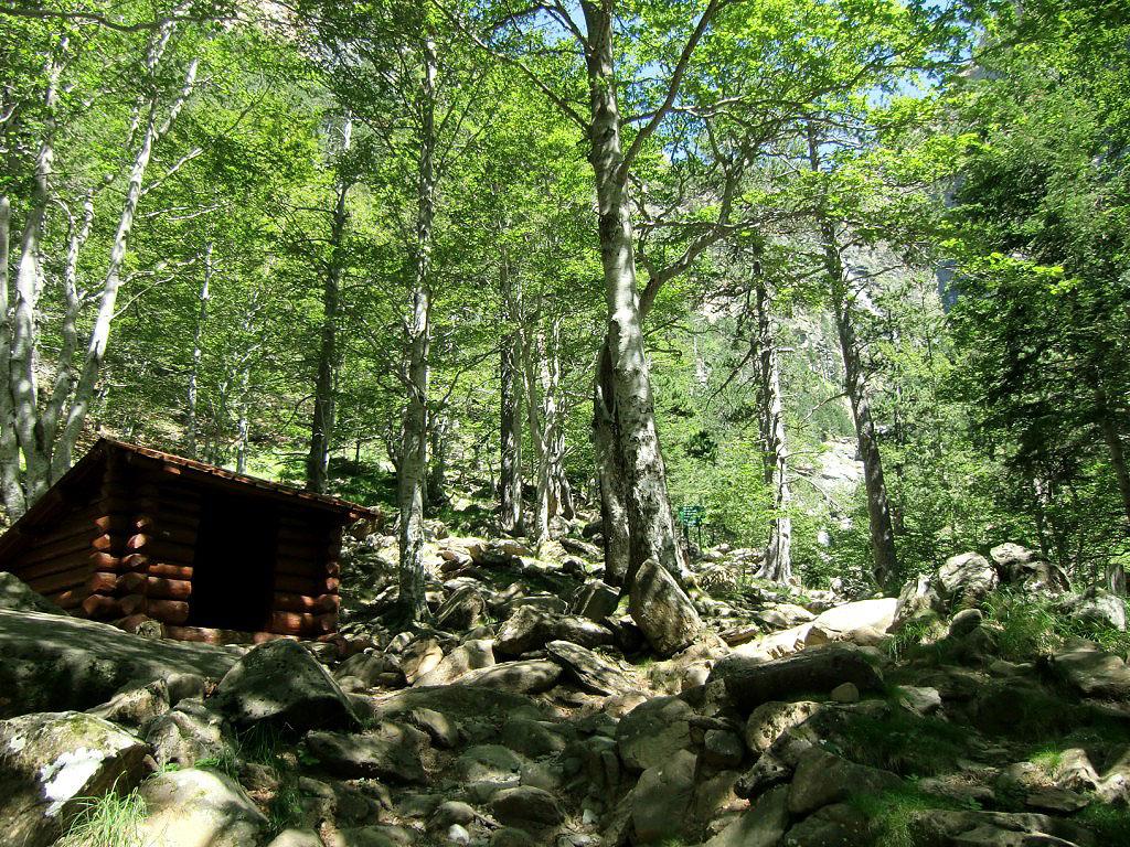 Cabaña de Cotatuero