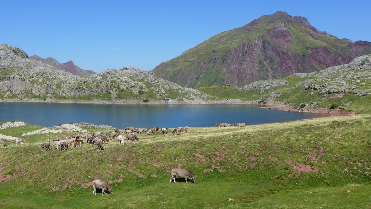 Candanchu-Estanes (12)