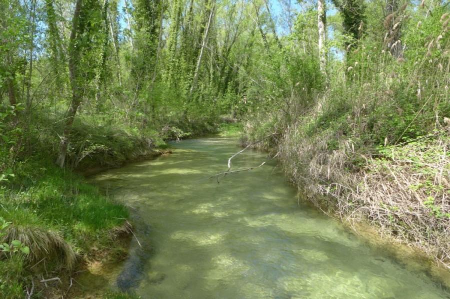 El río Vero