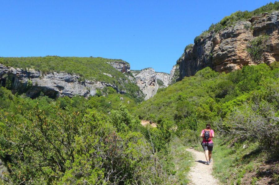 Sendero en dirección hacia la Cueva de Las Polvorosas