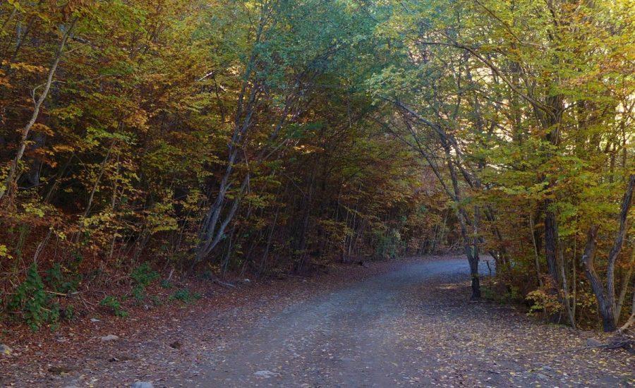 Camino del Betato, de Piedrafita de Jaca a Tramacastilla de Tena
