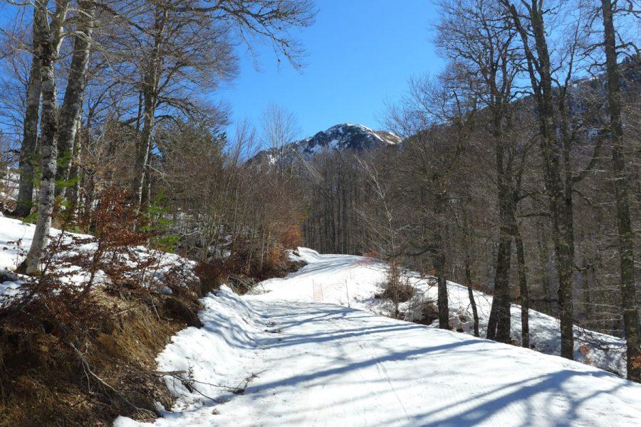 Pista negra de esquí de fondo de Linza
