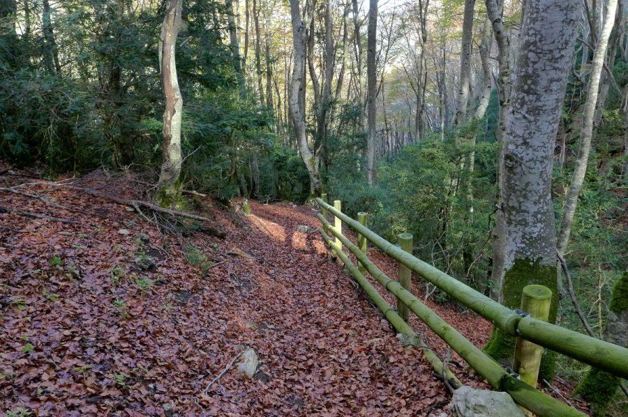 Senda de ascensión al Collado de Sarramiana, equipada con vallas de madera