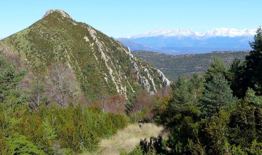 Pico Peiró con el Pirineo de fondo