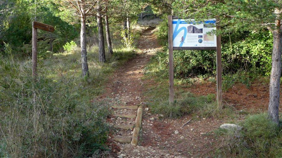 Paneles informativos de la ruta al hayedo y pico Peiró, ubicados en el inicio del sendero.