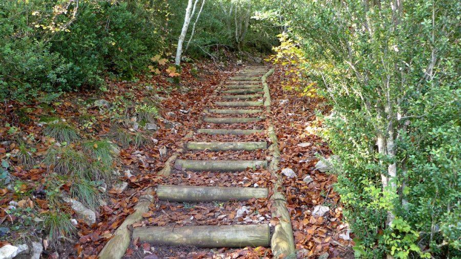 Peldaños de madera colocados en los tramos de mayor pendiente que facilitan la ascensión y evitan la erosión del terreno.